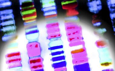 DNA Genes