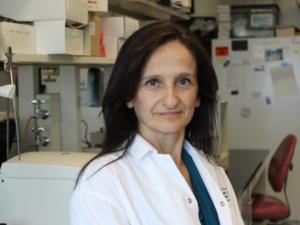 Image is of Dr. Catherine Tsilfidis